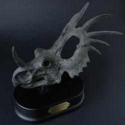 Styracosaurus schedel
